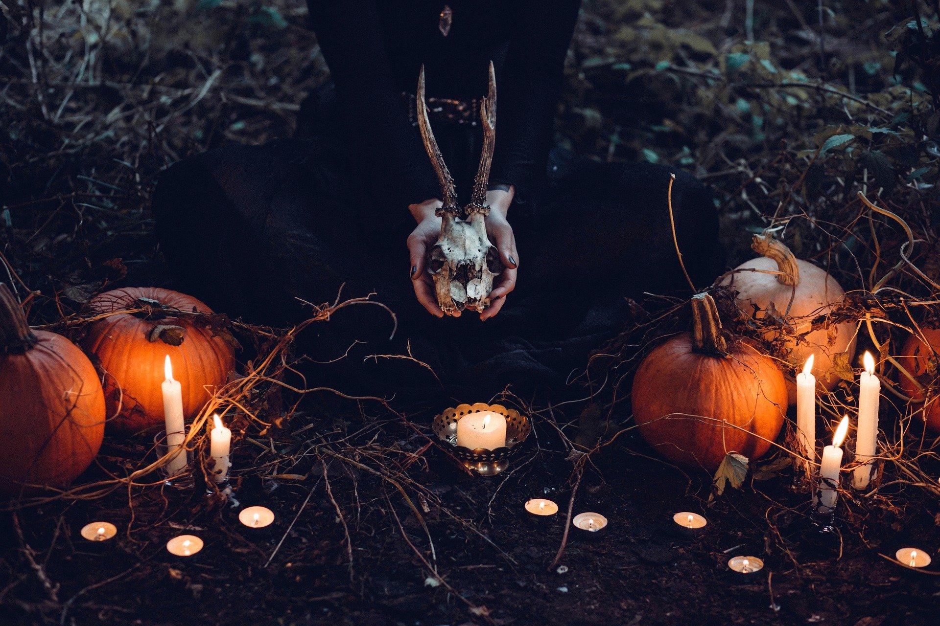 お盆の夜に行われる謎の儀式と必ず出会う蛇の正体